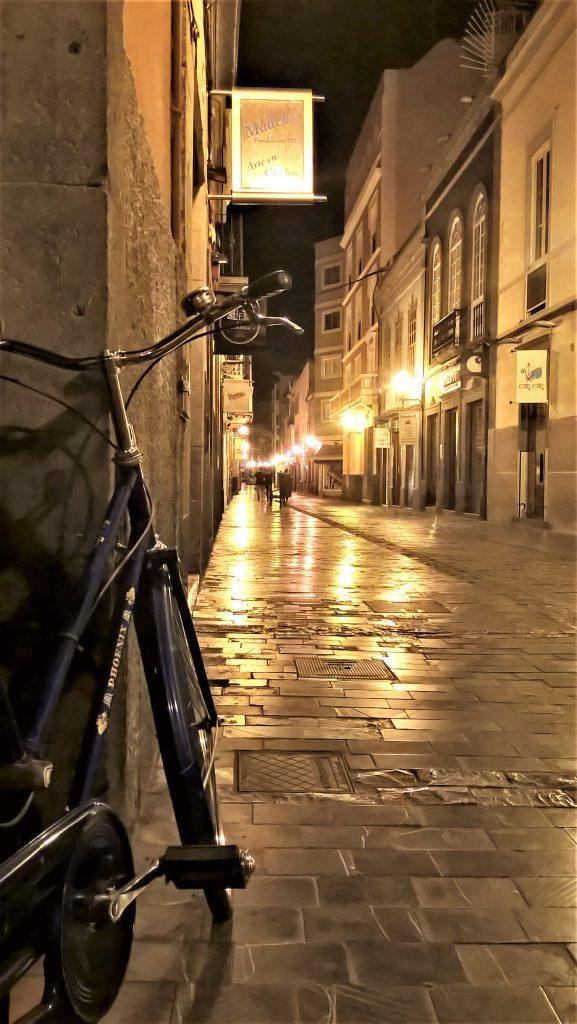 bicicletta a vegueta